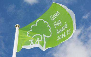 Green flag blowing in the wind